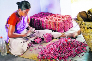 States Ban Firecrackers For Diwali- Will Sivakasi Stay Hungry?